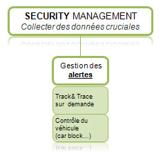 /security management